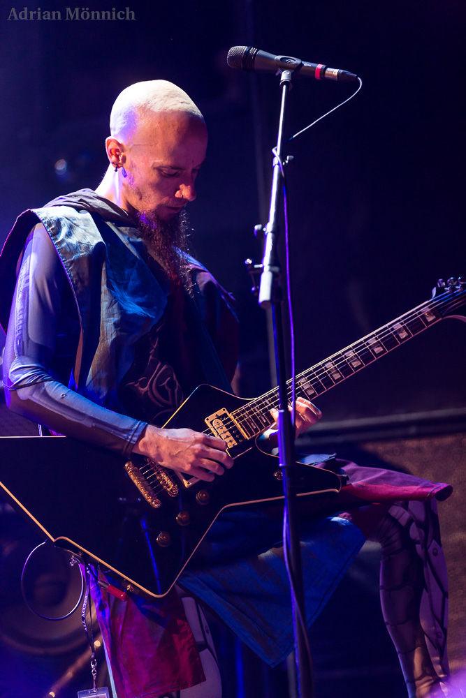 Hammer Tour